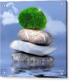 Balance Acrylic Print by VIAINA Visual Artist
