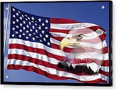 Bald Eagle On Flag Acrylic Print by Panoramic Images