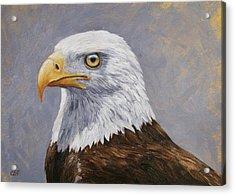 Bald Eagle Portrait Acrylic Print by Crista Forest