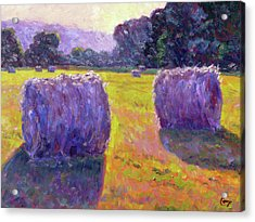 Bales Of Hay Acrylic Print by Michael Camp