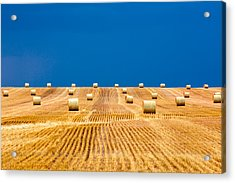 Bales On The Storm Acrylic Print by Todd Klassy