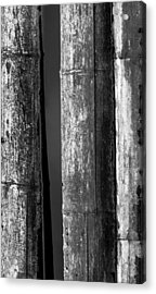 Bamboo Abstract Acrylic Print by Wim Lanclus