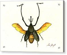 Bamboo Beetle Acrylic Print by Juan Bosco