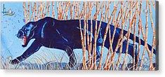 Bamboo Panther Acrylic Print by Larry  Johnson