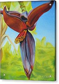 Banana Flower Acrylic Print by Katiana Valdes