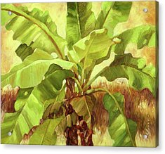 Bananas At Casa Cielo Acrylic Print by Monica Linville