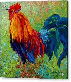 Band Of Gold - Rooster Acrylic Print by Marion Rose