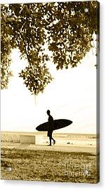Banyan Surfer - Triptych  Part 3 Of 3 Acrylic Print by Sean Davey