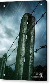 Barbed Wire Fence Acrylic Print by Carlos Caetano