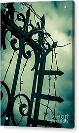 Barbed Wire Gate Acrylic Print by Carlos Caetano