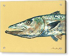 Barracuda Fish Acrylic Print by Juan  Bosco