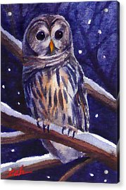 Barred Owl And Starry Sky Acrylic Print by Janet  Zeh
