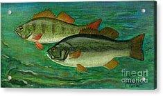 Bass And Perch Acrylic Print by Anna Folkartanna Maciejewska-Dyba