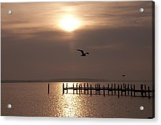 Bay Sunrise Acrylic Print by Bill Cannon