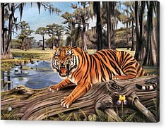 Bayou Mike Of Louisiana Acrylic Print by Mike Roberts