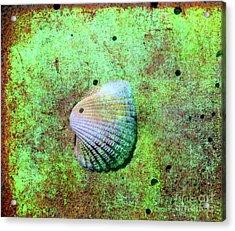 Beach Treasure Acrylic Print by Susanne Van Hulst