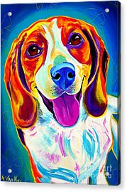 Beagle - Lucy Acrylic Print by Alicia VanNoy Call