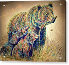 Bear Necessities Acrylic Print by Teshia Art