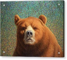 Bearish Acrylic Print by James W Johnson