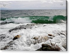 Beautiful Curl Acrylic Print by Sandra Updyke