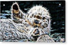 Beaver Collection Acrylic Print by Marvin Blaine