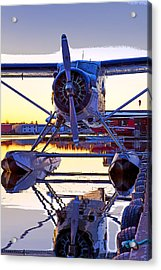 Beaver On Glass- Abstract Acrylic Print by Tim Grams