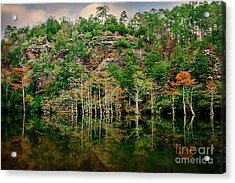 Beaver's Bend Overlook Acrylic Print by Tamyra Ayles