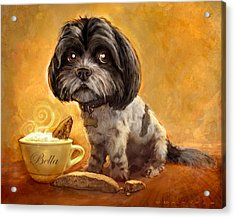 Bella's Biscotti Acrylic Print by Sean ODaniels