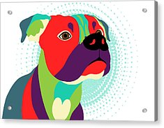Bennie The Boxer Dog - Wpap Acrylic Print by Shara Lee