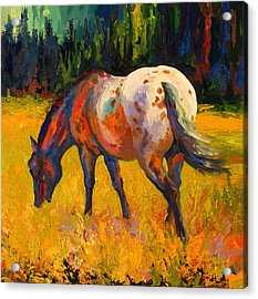 Best End Of An Appy Acrylic Print by Marion Rose