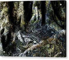 Beyond The Forest Edge Acrylic Print by Kelly Jade King