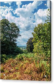 Beyond The Forest Acrylic Print by Wim Lanclus