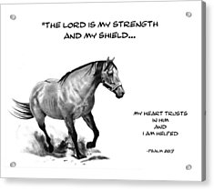Bible Verse With Drawing Of Horse Acrylic Print by Joyce Geleynse