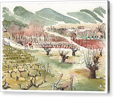 Bicycling Through Vineyards Acrylic Print by Tilly Strauss