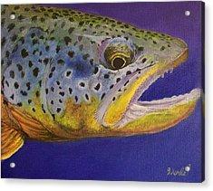 Big Brown Acrylic Print by Bill Werle