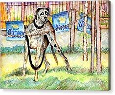 Big Dane Acrylic Print by Ion Danu