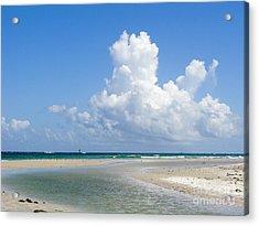 Big Florida Cotton  Acrylic Print by Jack Norton
