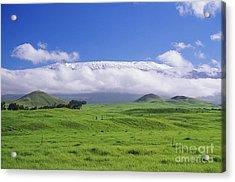 Big Island, Waimea Acrylic Print by Peter French - Printscapes