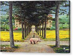 Big Pig - Pistoia -tuscany Acrylic Print by Trevor Neal