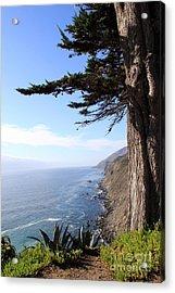 Big Sur Coastline Acrylic Print by Linda Woods