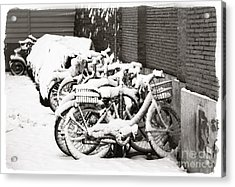 Bikes Parked And Full Of Snow Acrylic Print by Stefano Senise