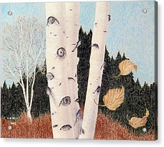 Birches Acrylic Print by Betsy Gray Bell