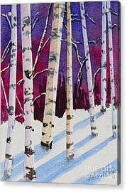 Birches In The Sun Acrylic Print by Mohamed Hirji