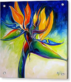 Bird Of Paradise 24 Acrylic Print by Marcia Baldwin