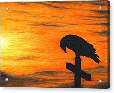 Bird Of Pray Acrylic Print by Don McMahon