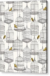 Birdcages Acrylic Print by Stephanie Davies