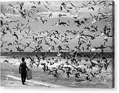 Birds Birds Acrylic Print by Liesbeth Van Der Werf