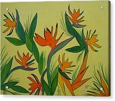 Birds Of Paradise Acrylic Print by Elizabeth Ribet