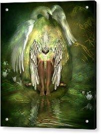 Birth Of A Swan Acrylic Print by Carol Cavalaris
