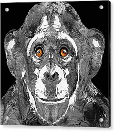 Black And White Art - Monkey Business 2 - By Sharon Cummings Acrylic Print by Sharon Cummings